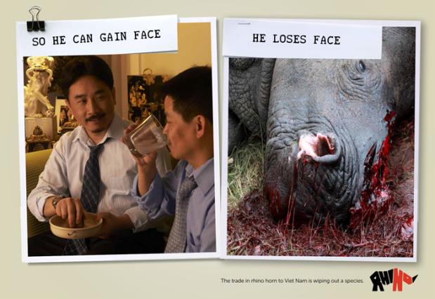 Bloody Rhino Horn